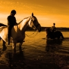 Horse back riding in the midnight sun