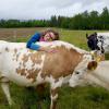 Hug_ a_cow